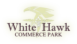 White Hawk Logo